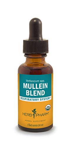 Herb Pharm Certified Organic Mullein Blend Extract for Respiratory System Support - 1 Ounce