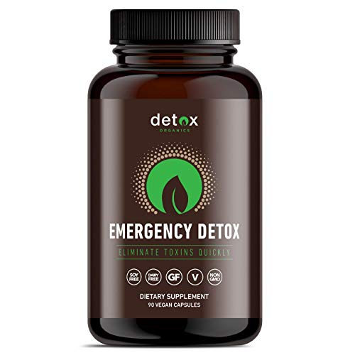 Detox Organics Activated Charcoal Capsules - Organic Coconut Charcoal Pills for Stomach Bloating and Gas Relief - Tablets with Carbon Powder for Hangover Cure